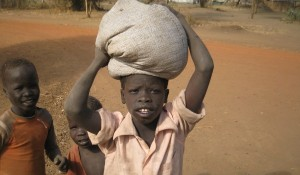 Food Aid: Sorghum for one person