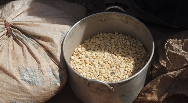 Food Aid: Sorghum for sixteen people