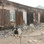 Past and Present: Boko Haram in Historical Context