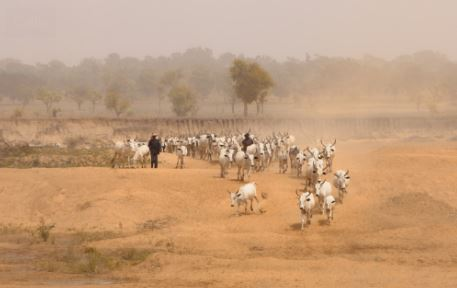 Herdsmen-Farmer Conflict in Nigeria:  An Ongoing Legacy of Division and Mistrust
